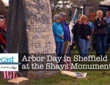Arbor Day in Sheffield